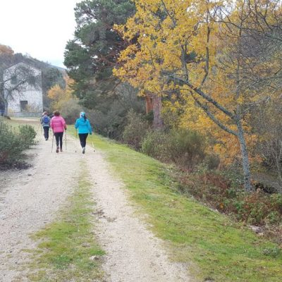 Nordic walking por pesquerías reales, Segovia