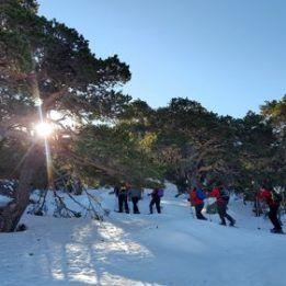 Ruta con raquetas de nieve por el Parque Nacional de la Sierra de Guadarrama