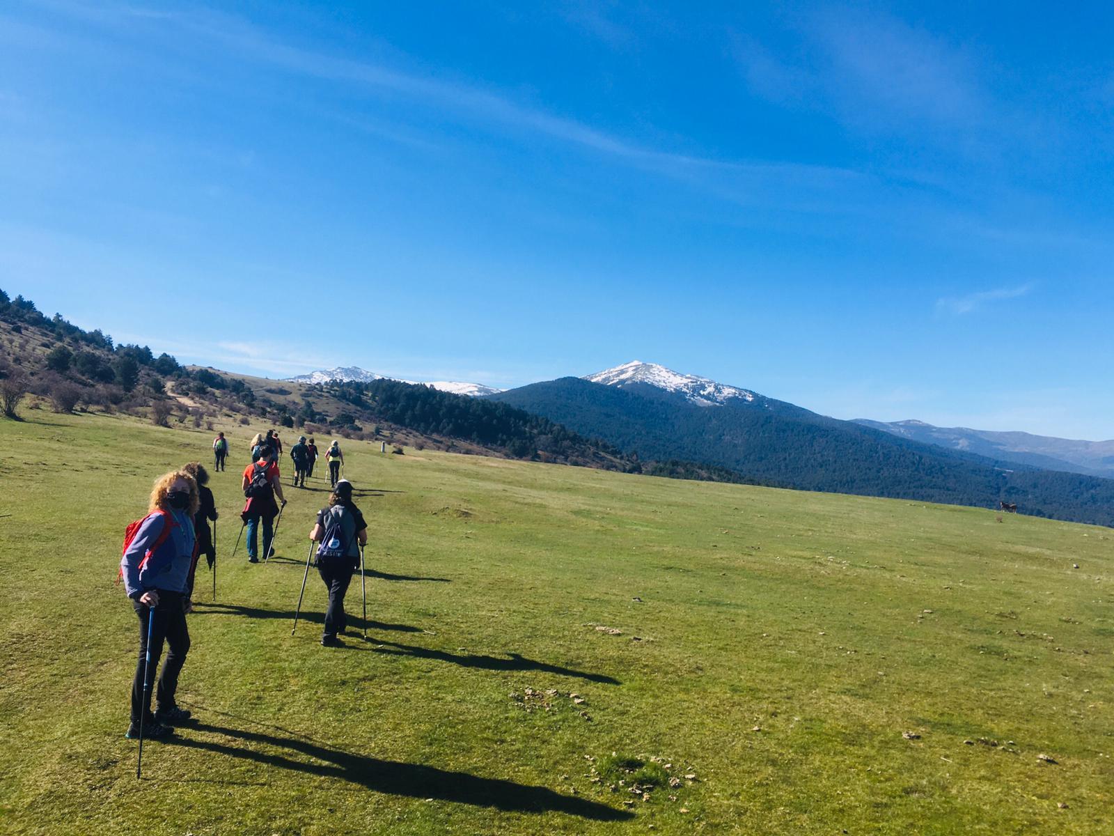 Marcha nórdica por los Montes de Valsaín